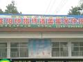 猪饲料价格 正大猪饲料价格 河南猪饲料价格 (0播放)