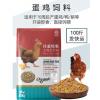 产蛋鸡饲料全价料喂鸡玉米碎粒下蛋鸡中大鸡家用鸡食鸭鹌鹑100斤